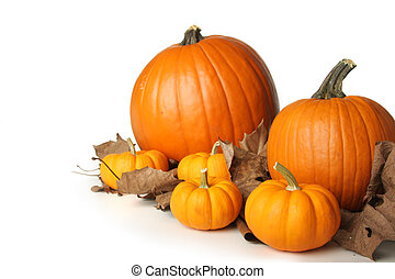Pumpkins on leaves