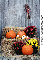 Pumpkins and Chrysanthemums on a bale of straw against a rustic background.
