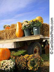 Pumpkins on the cart