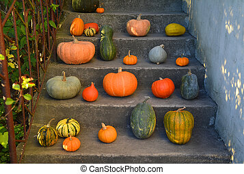 Pumpkins on the old outdoor stairs