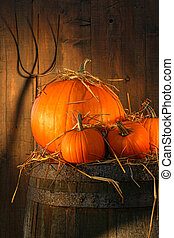Pumpkins on wine barrel with pitch fork