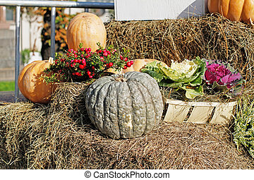 Pumpkins, pink berries of pernettya, cabbage as autumn decoration at market place