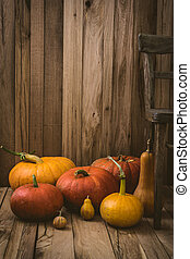 Pumpkins variety - Thanksgiving background. Pumpkins on old...