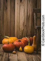 Pumpkins variety - Thanksgiving background. Pumpkins on old...