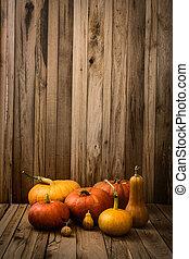 Pumpkins variety - Thanksgiving concept. Pumpkins on old...