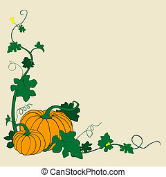 pumpkins vector illustration