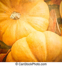 Pumpkins with a Textured Effect on Leaves