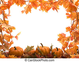 Pumpkins on white background with fall leaves frame