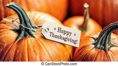 Pumpkins With Happy Thanksgiving Paper Tag