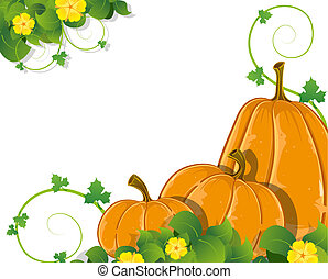 Pumpkins with leaves and flowers