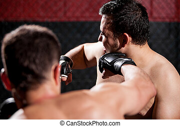 Punching an opponent during a fight - Point of view of a MMA...