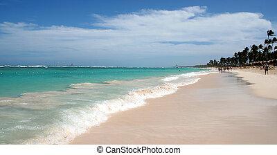 punta, 素晴らしい, 浜, cana