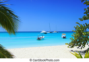 Punta Cana, saona island - Caribbean sea, saona island, ...