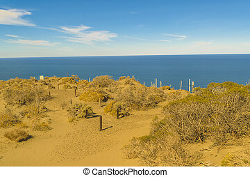 Arid environment at Punta del Marquez, a touristic viewpoint located in Chubut, Argentina