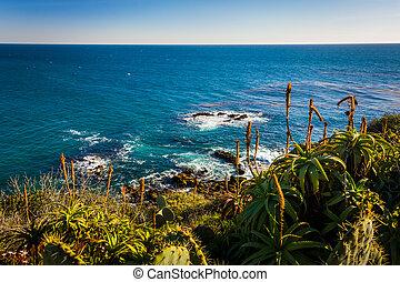 punto, océano, plantas, bahía, vista, parque, creciente, ...