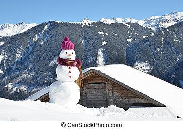 pupazzo di neve, panorama, contro, alpino