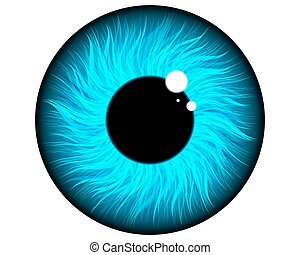 pupil of the eye