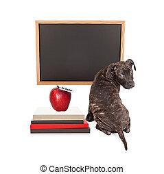 Puppy at School Blank Chalkboard