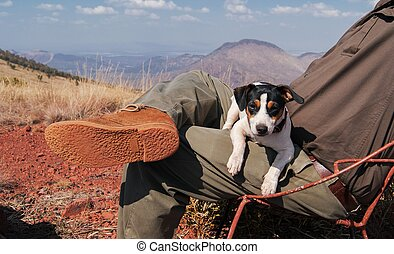puppy is sitting on owner the lap  background of mountains