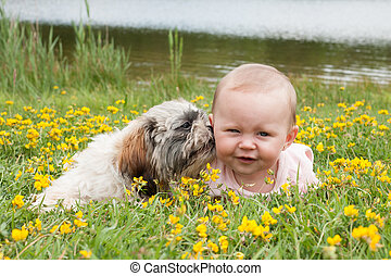 Puppy is washing the baby