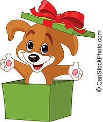 Puppy jumping out from a box - Puppy jumping out from a gift...