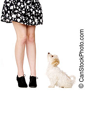 Puppy next to a woman's legs