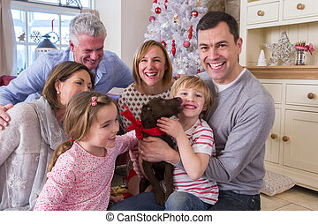 Puppy Surprise - Three Generation Family at Christmas Time. ...