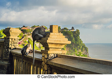 Pura Luhur Uluwatu temple, Bali, Indonesia. Amazing landscape - cliff with blue sky and sea