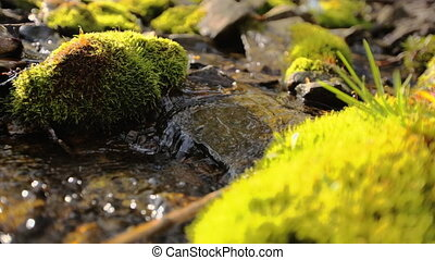 Pure fresh forest stream running over mossy rocks, close up