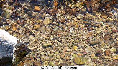 Pure fresh water. Clear stream.