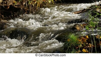 Pure fresh water waterfall in autumn forest - Pure fresh...