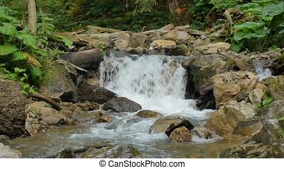 Pure fresh water waterfall in forest.