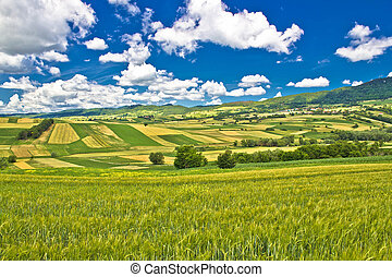 Pure green nature of Croatia under blue sky, Kalnik...