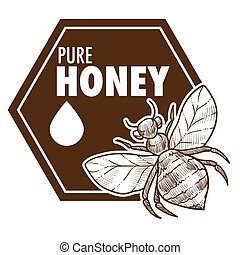 Pure honey poster with bee monochrome sketch outline