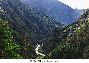 Pure mountain river