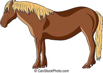 Purebread horse vector