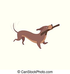 Purebred brown dachshund dog playing with stick vector Illustration on a white background
