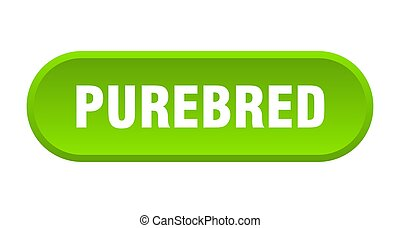 purebred button. rounded sign on white background