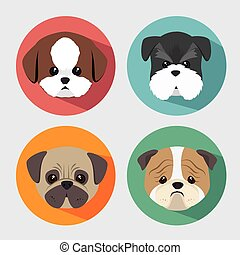 purebred, conception, chiens