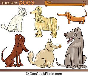 purebred, conjunto, perros, caricatura