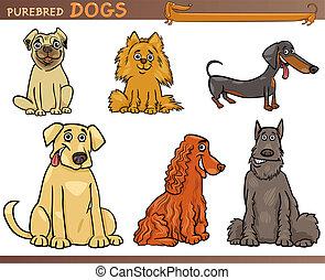 purebred, conjunto, perros, ilustración, caricatura