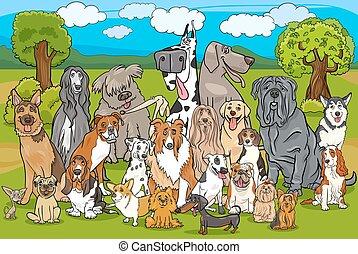 purebred, csoport, kutyák, karikatúra
