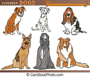 purebred, ensemble, chiens, illustration, dessin animé