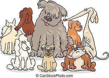 purebred, groep, spotprent, honden