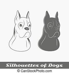 purebred, körvonal, kutyák