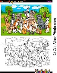 purebred, kleuren, groep, honden, boek