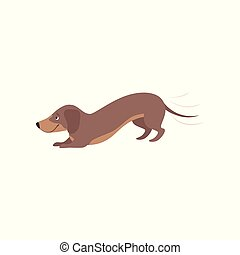 Purebred playful brown dachshund dog vector Illustration on a white background