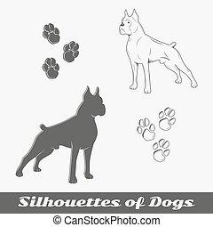 purebred, silhouettes, chiens