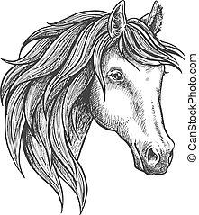 Purebred stallion of andalusian breed sketch - Strongly...