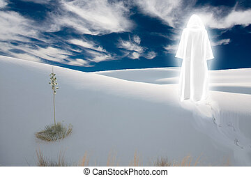 Purity - Figure in shining cloak stands at the desert